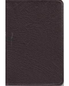 Die Bibel - braunes Ziegenleder mit Rotgoldschnitt