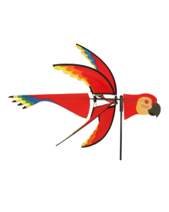 5-Flügel  Papagei
