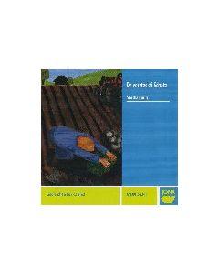 (CD) De versteckti Schatz